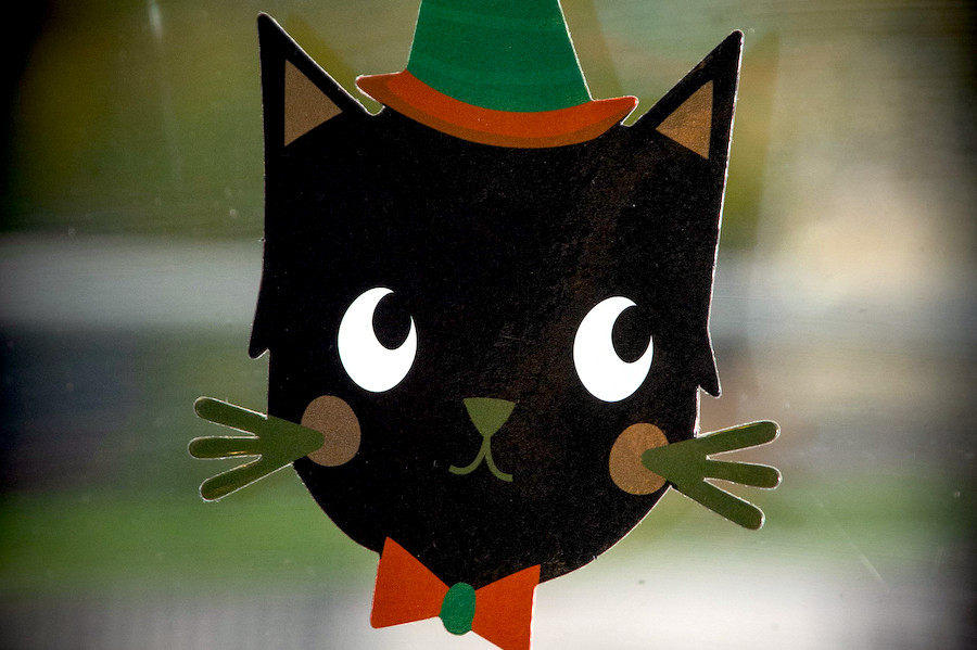 Amberley Halloween Cat