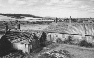 A Brief History of Amberley Museum